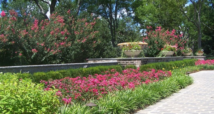 Using Color to Enhance Your Landscape